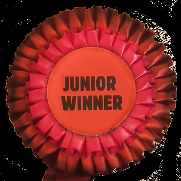 zg-junior-winner1