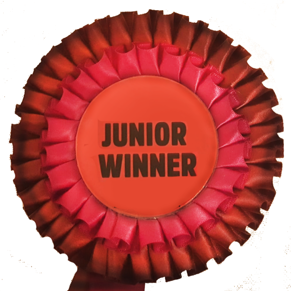 zg-junior-winner1